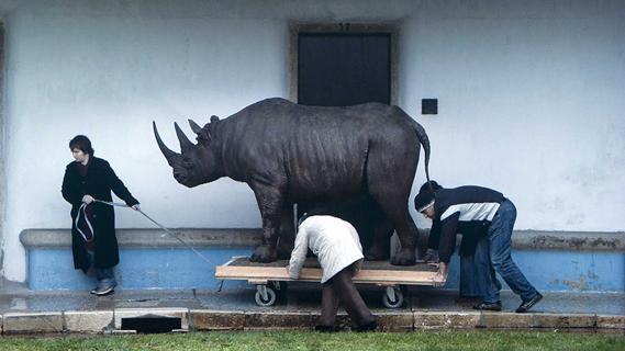 Javier Téllez. O Rinoceronte de Dürer, 2010. Obra concebida para la Fundación Calouste Gulbenkian - CAM (Centre de Arte Moderna), Lisboa, 2010. Cortesía del artista y de la Galería Peter Kilchmann, Zurich