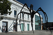 """Maman"", by Louise Bourgeois arrived to Proa's esplanade"