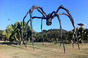 Louise Bourgeois's exhibition at the Museum of Modern Art, Rio de Janeiro